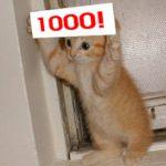 確実に1000円貰うか、75%の確率で貰える1500円か
