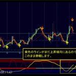 ブラックAIストラテジーFX 最新トレード動画で自動決済21万円