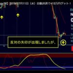 ブラックAIストラテジーFX 最新トレード動画で自動決済→27.1pips