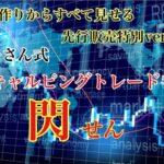 "<span class=""title"">ぷーさん式FXスキャルピングトレード手法「閃」検証結果と限定EA特典</span>"