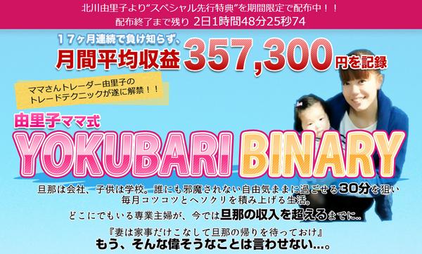 YOKUBARI BINARY